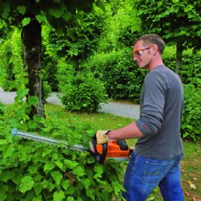 Avalon Assessments Ltd - NPTC Certificate of Competence in Safe Use Of Hedge Trimmers